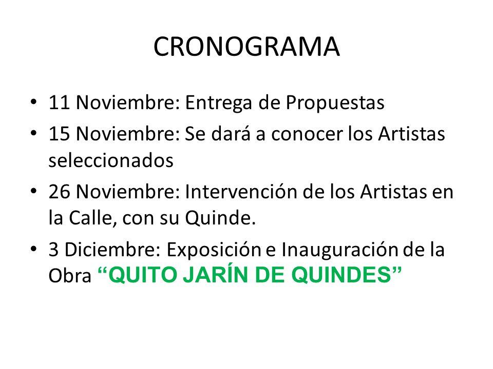 CRONOGRAMA 11 Noviembre: Entrega de Propuestas