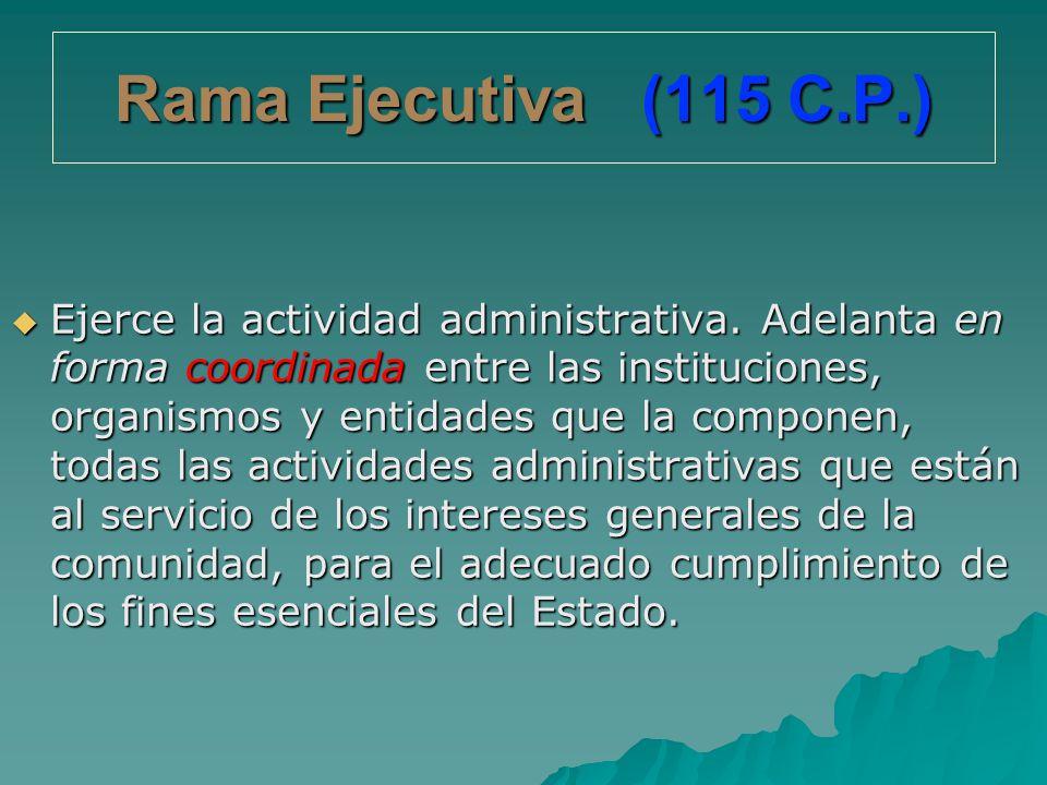 Rama Ejecutiva (115 C.P.)