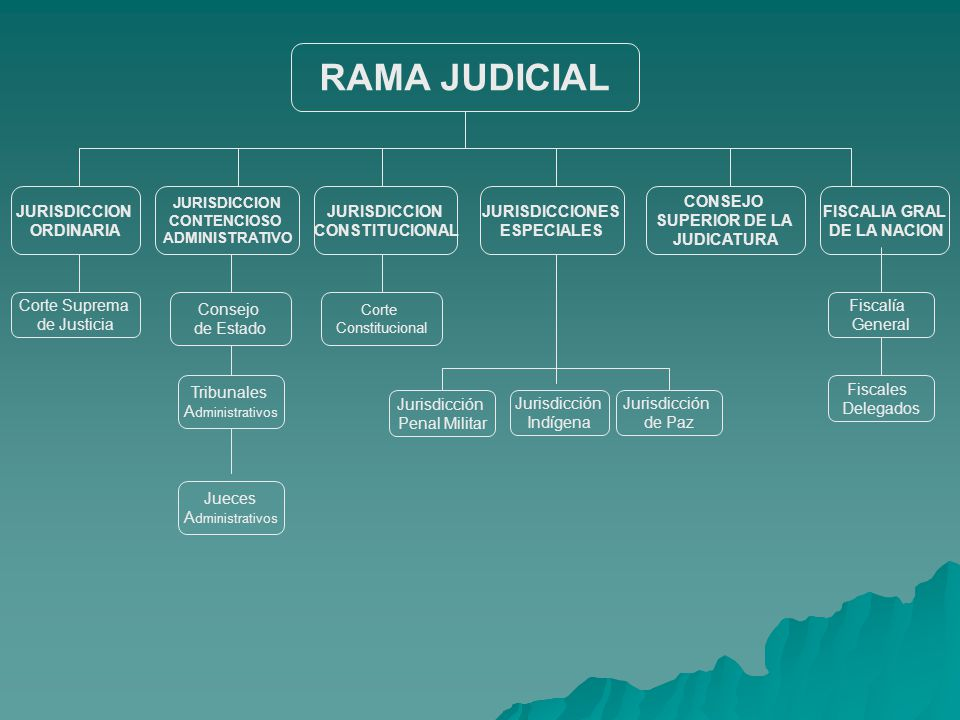 RAMA JUDICIAL JURISDICCION ORDINARIA JURISDICCION CONSTITUCIONAL