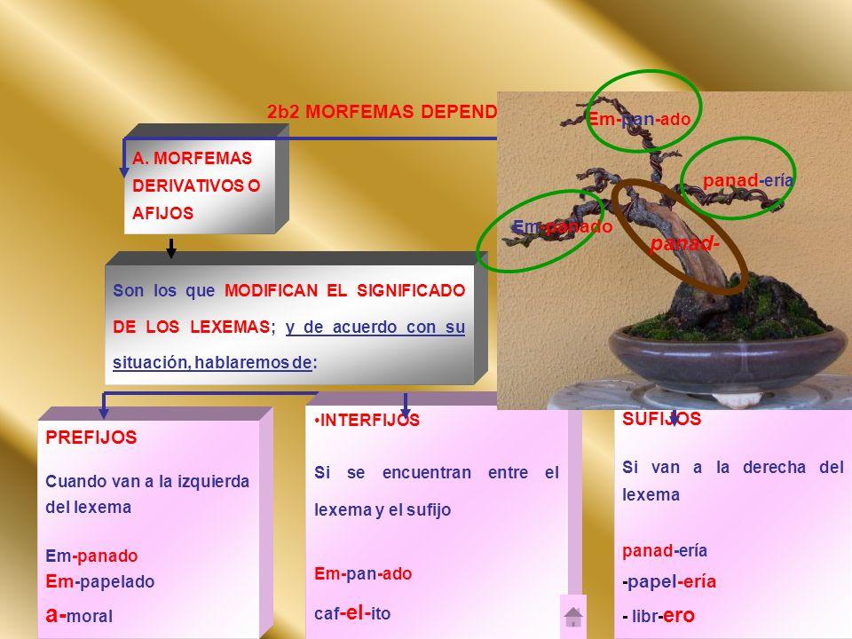 a-moral panad- 2b2 MORFEMAS DEPENDIENTES Em-pan-ado panad-ería SUFIJOS