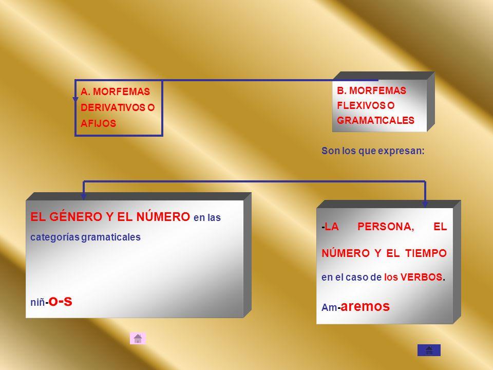 EL GÉNERO Y EL NÚMERO en las categorías gramaticales