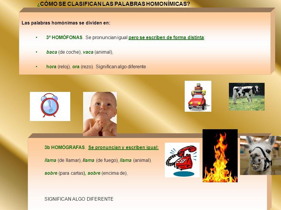 ¿CÓMO SE CLASIFICAN LAS PALABRAS HOMONÍMICAS