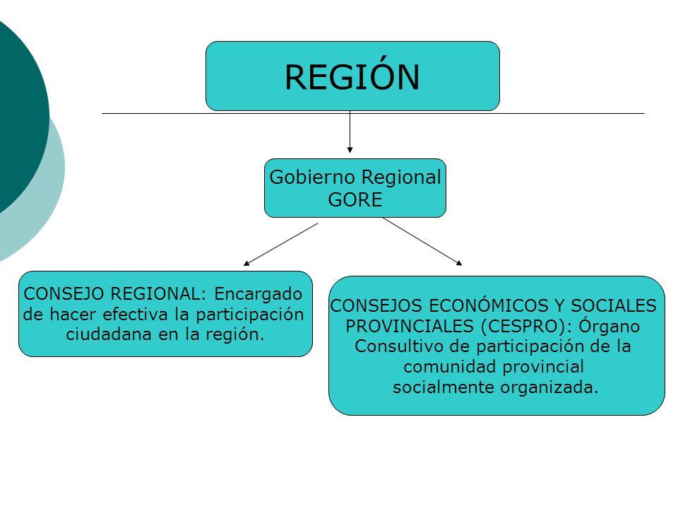 REGIÓN Gobierno Regional GORE CONSEJO REGIONAL: Encargado