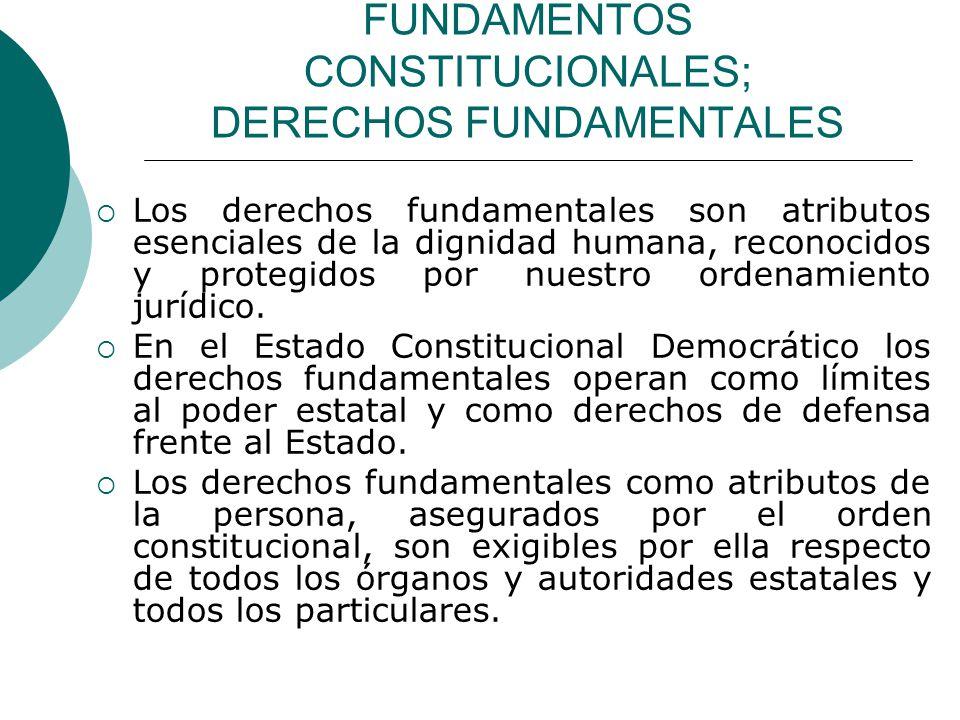 FUNDAMENTOS CONSTITUCIONALES; DERECHOS FUNDAMENTALES