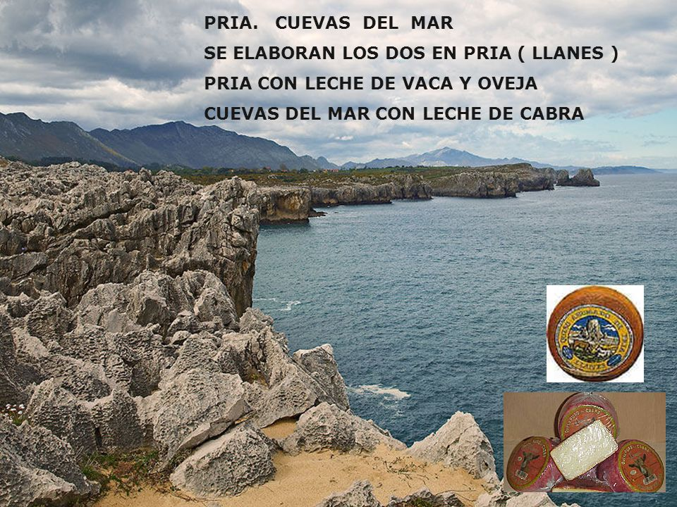 PRIA. CUEVAS DEL MAR SE ELABORAN LOS DOS EN PRIA ( LLANES ) PRIA CON LECHE DE VACA Y OVEJA.