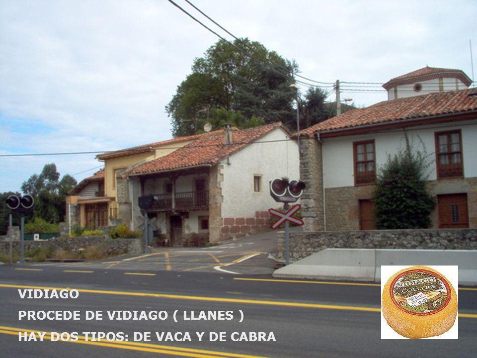 VIDIAGO PROCEDE DE VIDIAGO ( LLANES ) HAY DOS TIPOS: DE VACA Y DE CABRA