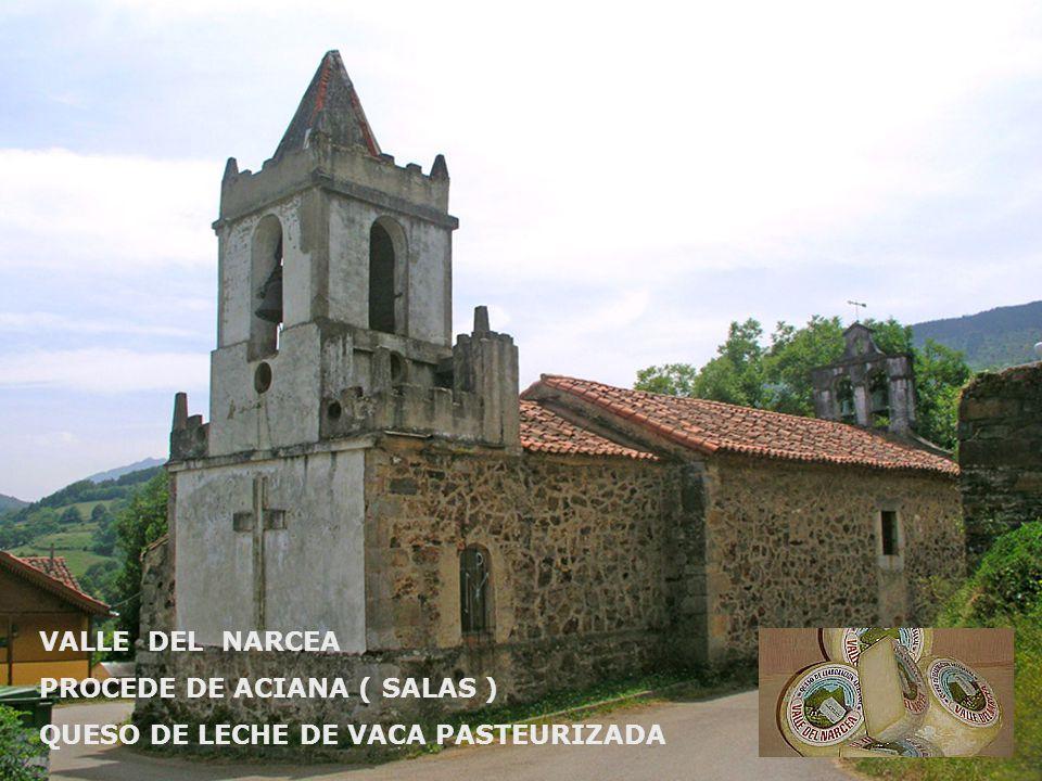 VALLE DEL NARCEA PROCEDE DE ACIANA ( SALAS ) QUESO DE LECHE DE VACA PASTEURIZADA