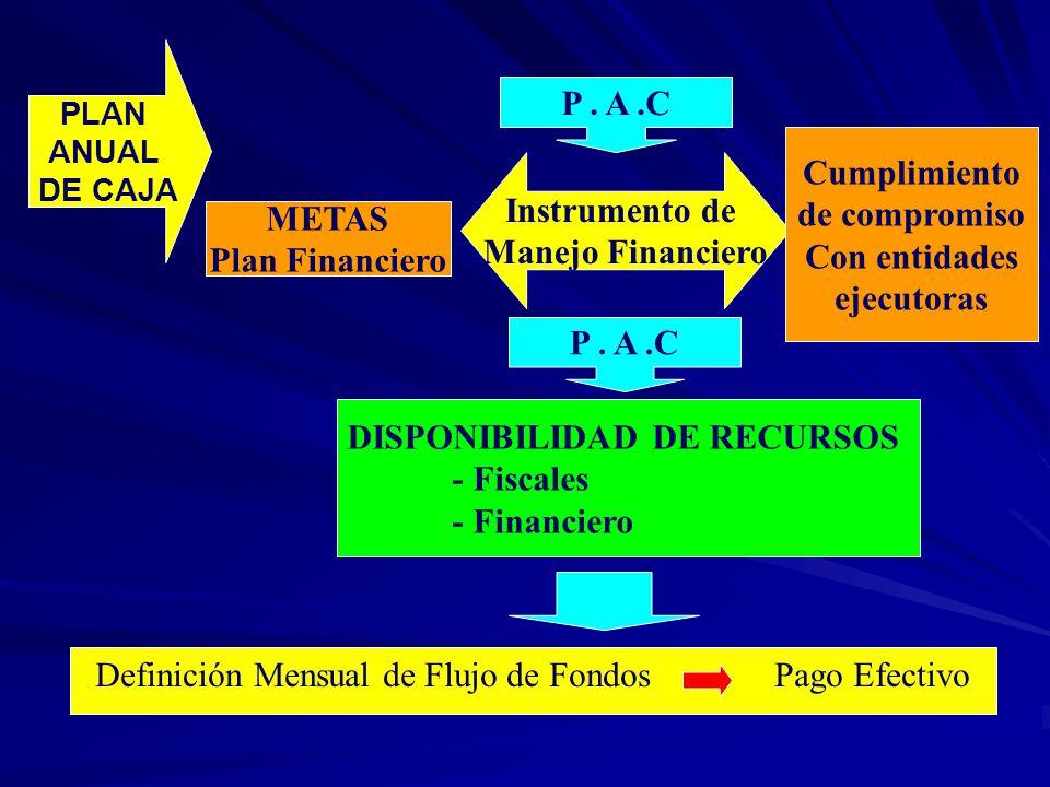 Definición Mensual de Flujo de Fondos Pago Efectivo