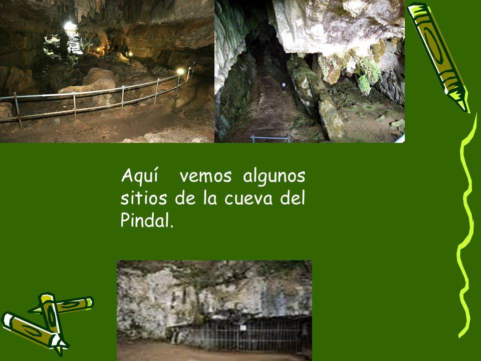 Aquí vemos algunos sitios de la cueva del Pindal.