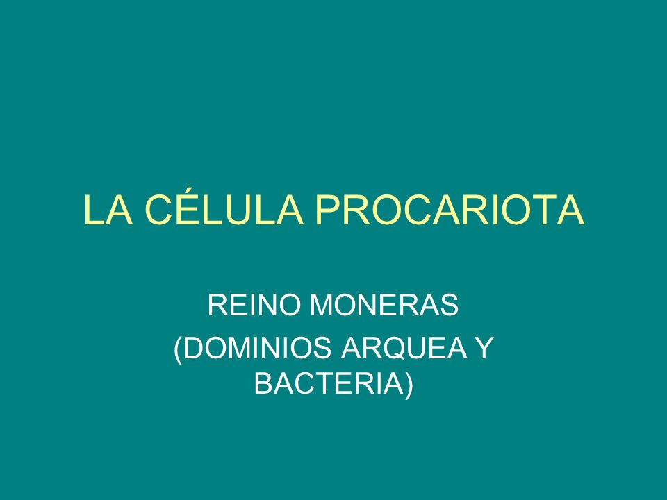 REINO MONERAS (DOMINIOS ARQUEA Y BACTERIA)