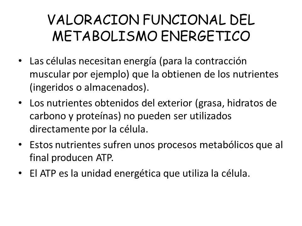 VALORACION FUNCIONAL DEL METABOLISMO ENERGETICO