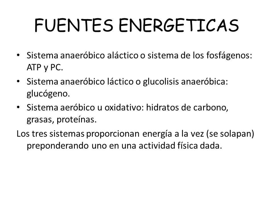 FUENTES ENERGETICASSistema anaeróbico aláctico o sistema de los fosfágenos: ATP y PC. Sistema anaeróbico láctico o glucolisis anaeróbica: glucógeno.