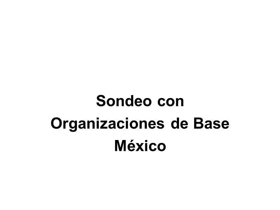 Organizaciones de Base