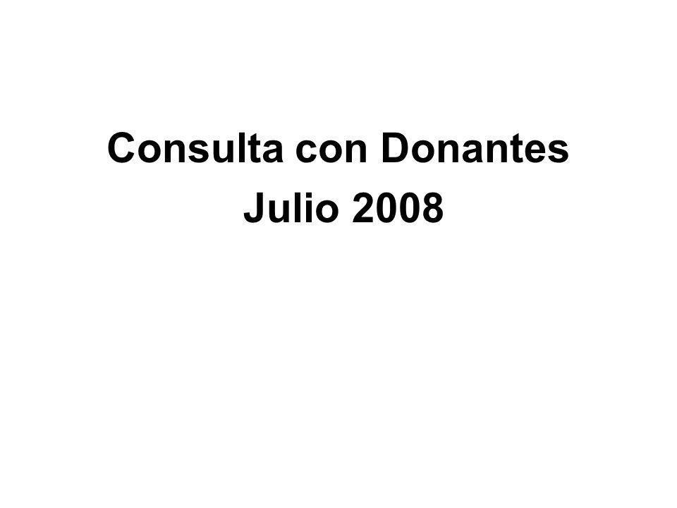 Consulta con Donantes Julio 2008