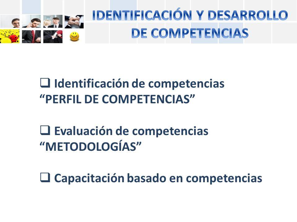 IDENTIFICACIÓN Y DESARROLLO DE COMPETENCIAS