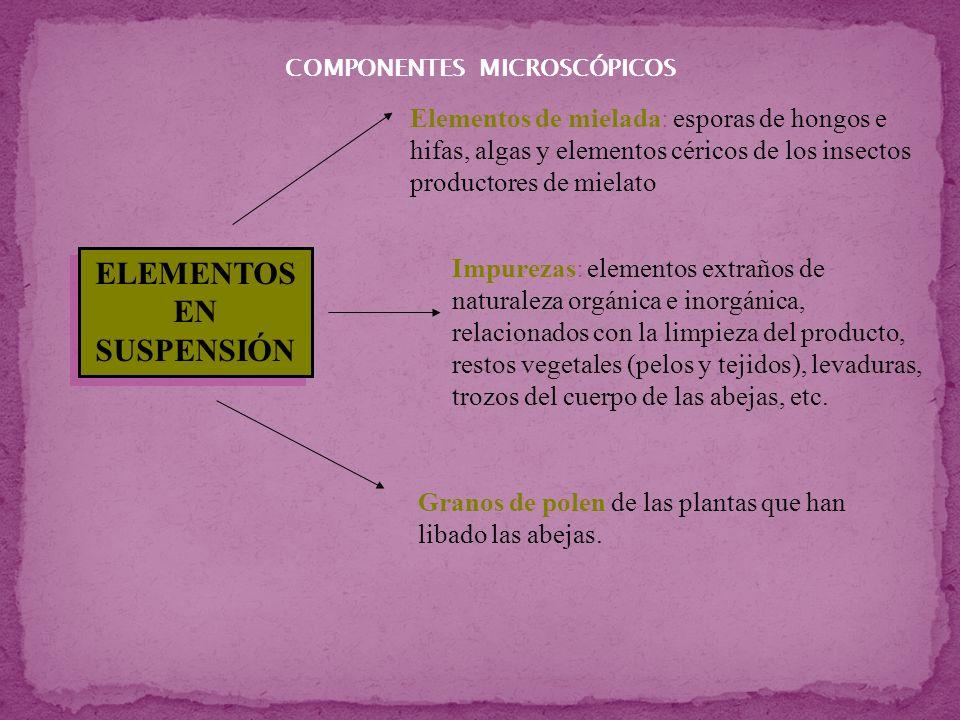 COMPONENTES MICROSCÓPICOS ELEMENTOS EN SUSPENSIÓN