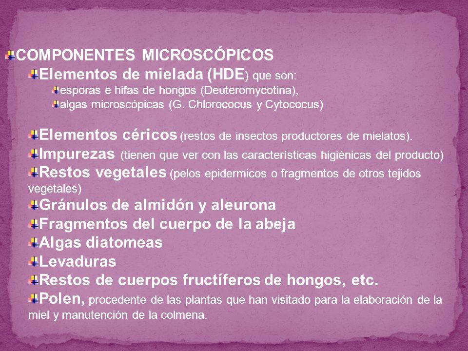 COMPONENTES MICROSCÓPICOS Elementos de mielada (HDE) que son: