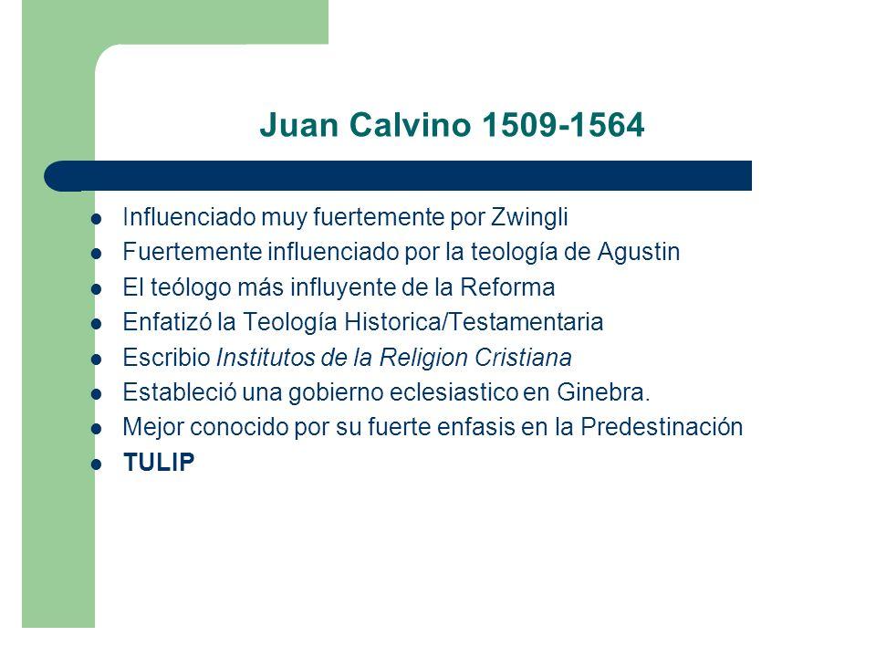 Juan Calvino 1509-1564 Influenciado muy fuertemente por Zwingli