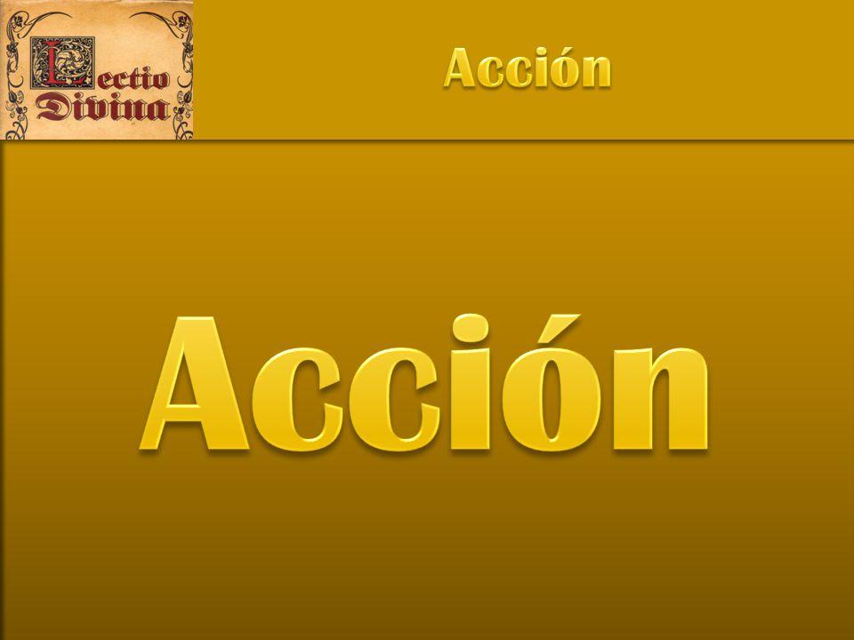 Acción Acción