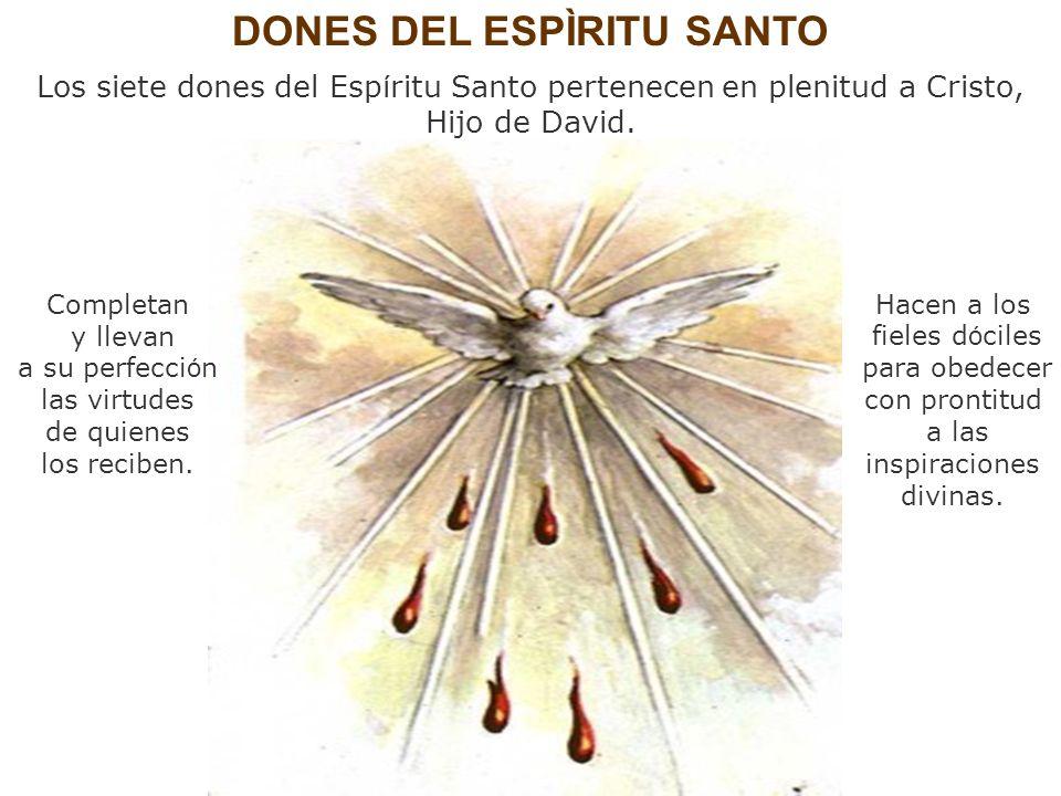 DONES DEL ESPÌRITU SANTO