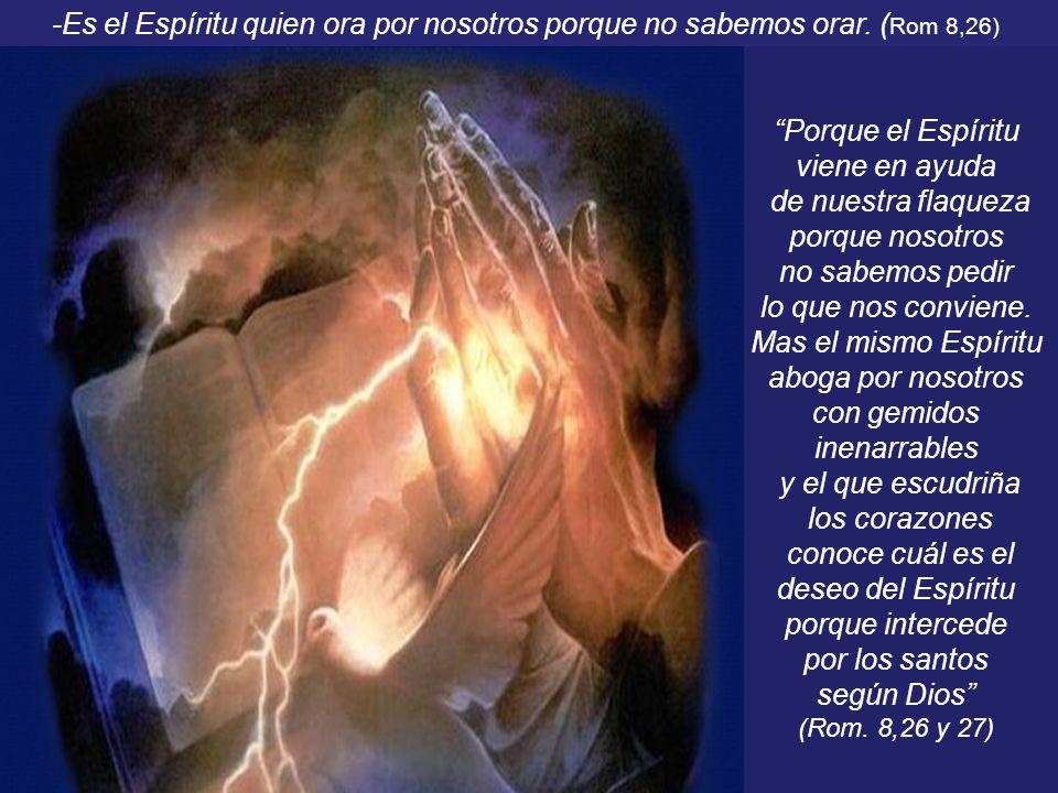 Porque el Espíritu viene en ayuda de nuestra flaqueza porque nosotros