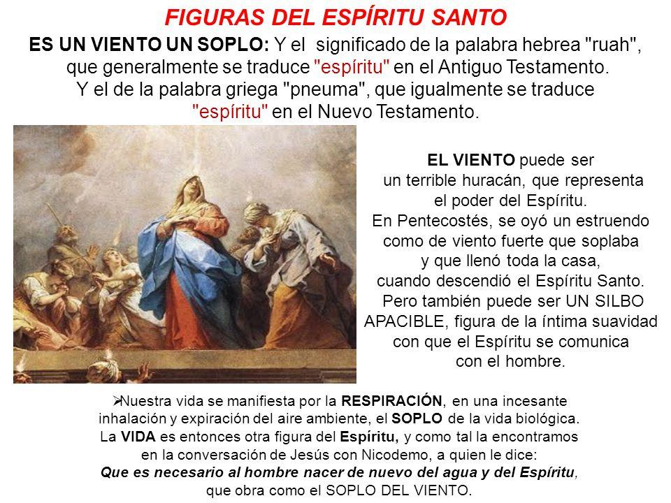 FIGURAS DEL ESPÍRITU SANTO