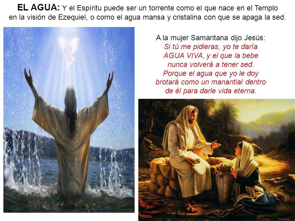 EL AGUA: Y el Espíritu puede ser un torrente como el que nace en el Templo