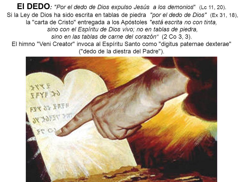 El DEDO: Por el dedo de Dios expulso Jesús a los demonios (Lc 11, 20).