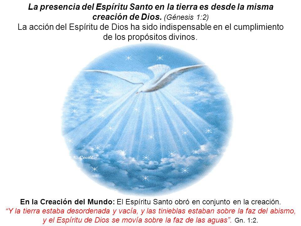 La presencia del Espíritu Santo en la tierra es desde la misma