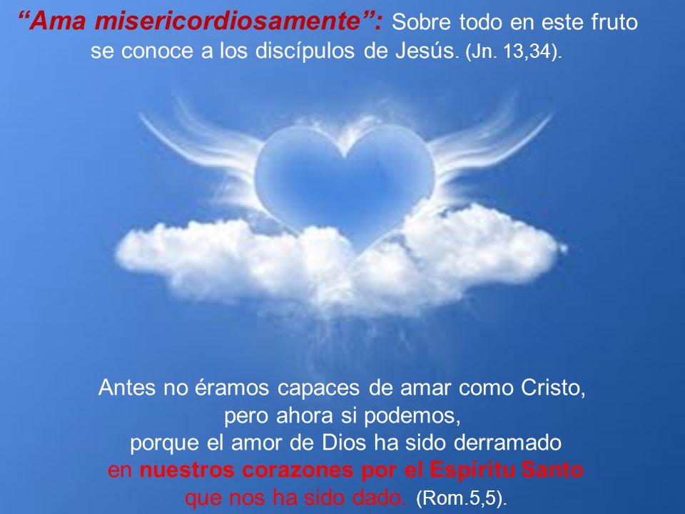 Ama misericordiosamente : Sobre todo en este fruto se conoce a los discípulos de Jesús. (Jn. 13,34).