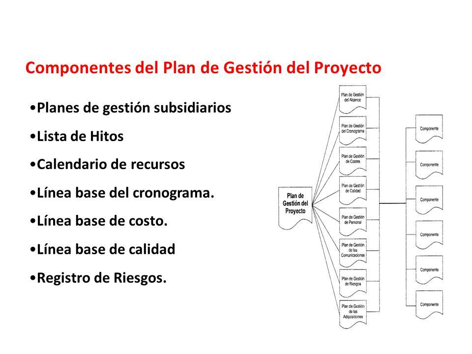 Componentes del Plan de Gestión del Proyecto
