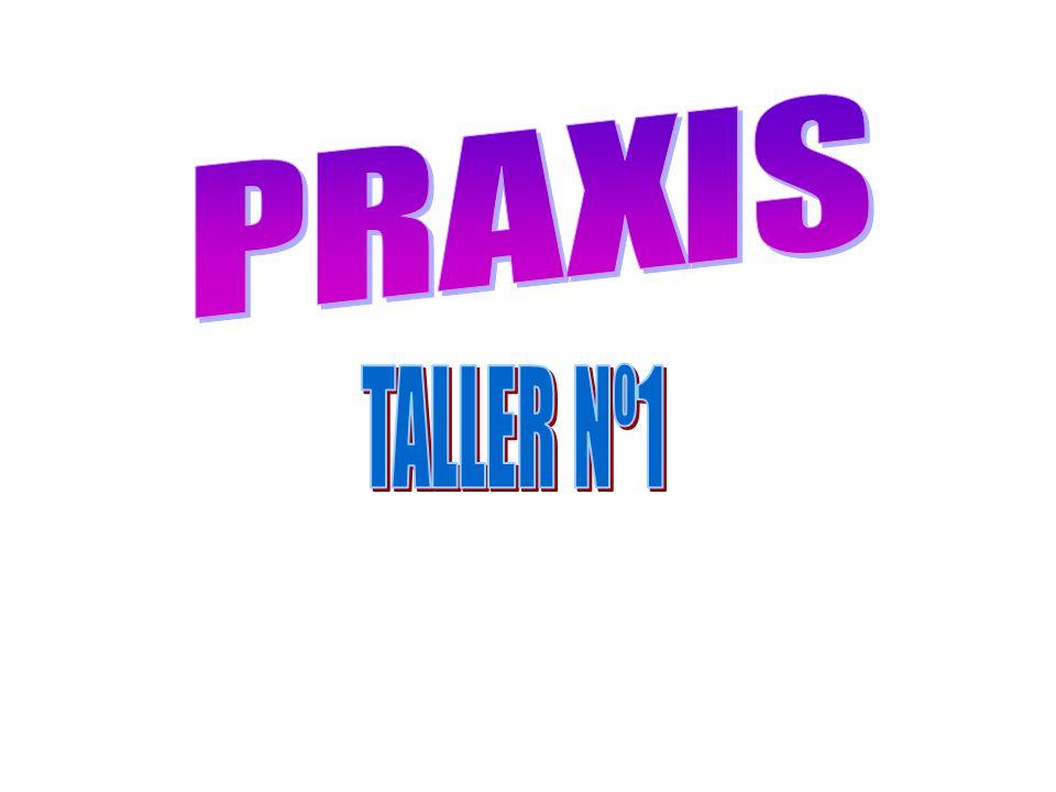 PRAXIS TALLER Nº1