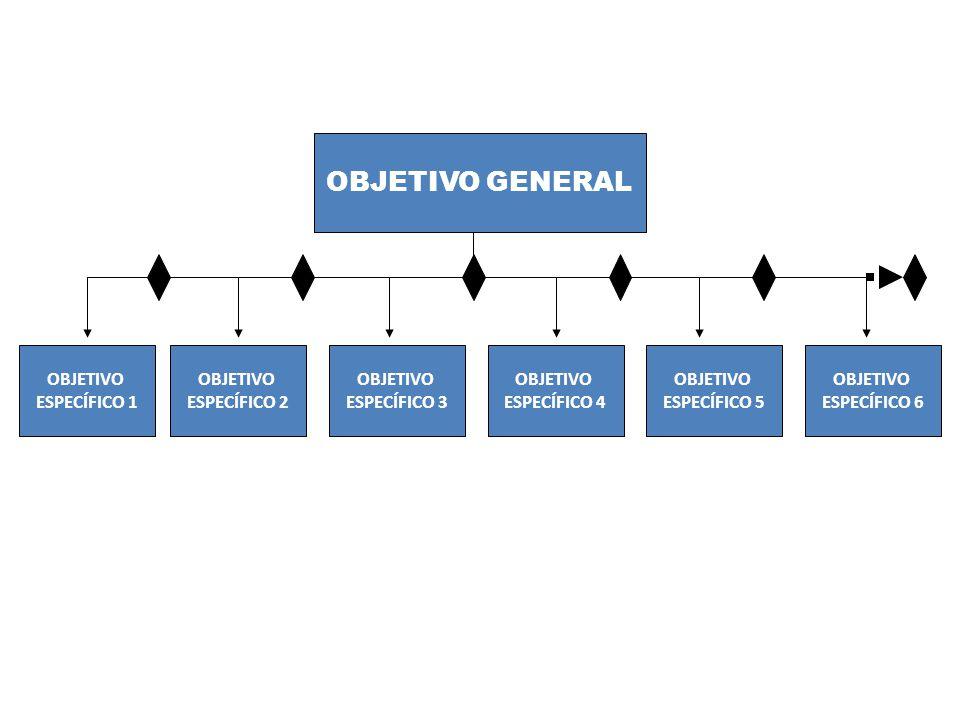 OBJETIVO GENERAL OBJETIVO ESPECÍFICO 1 OBJETIVO ESPECÍFICO 2 OBJETIVO