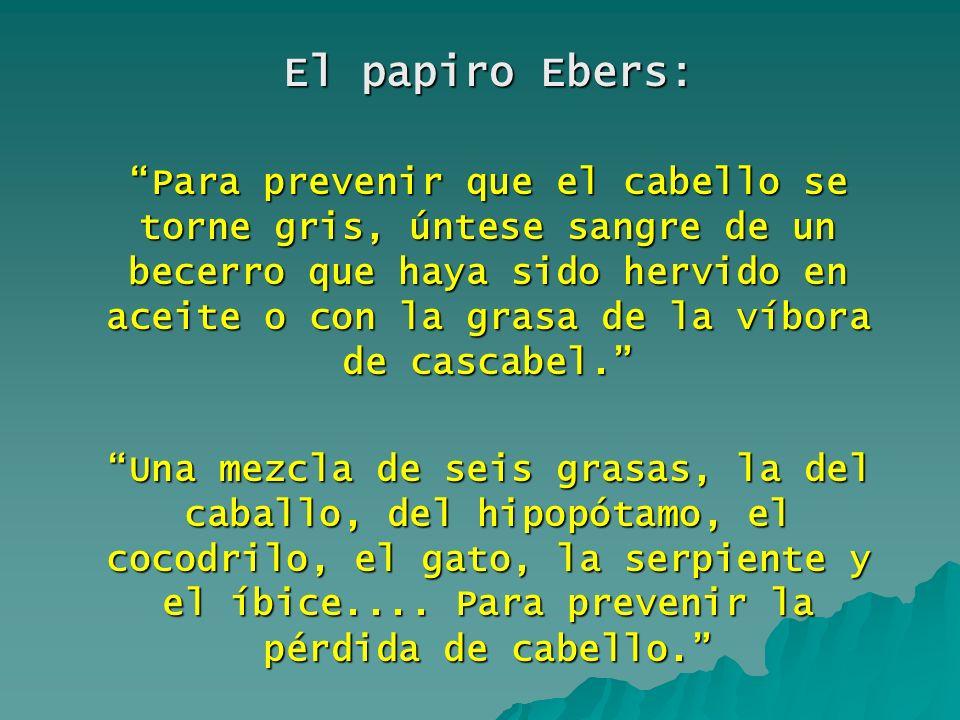 El papiro Ebers: