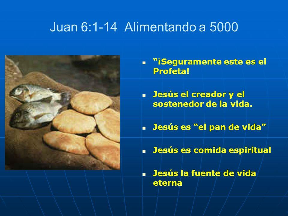 Juan 6:1-14 Alimentando a 5000 ¡Seguramente este es el Profeta!