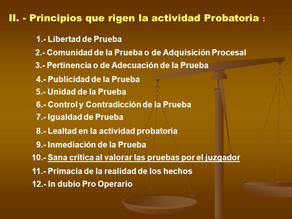 II. - Principios que rigen la actividad Probatoria :
