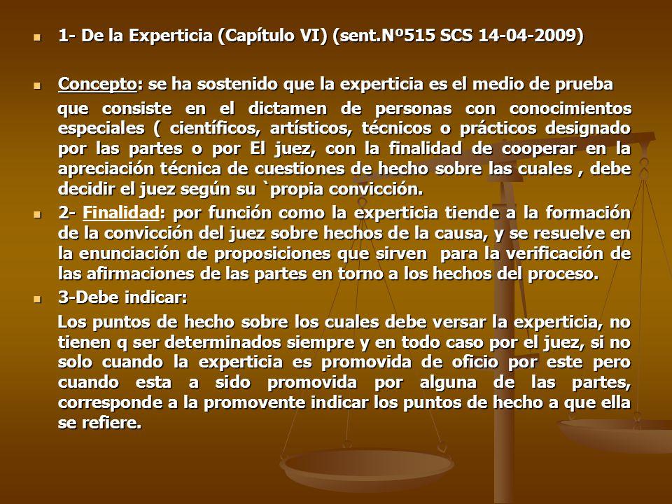 1- De la Experticia (Capítulo VI) (sent.Nº515 SCS 14-04-2009)