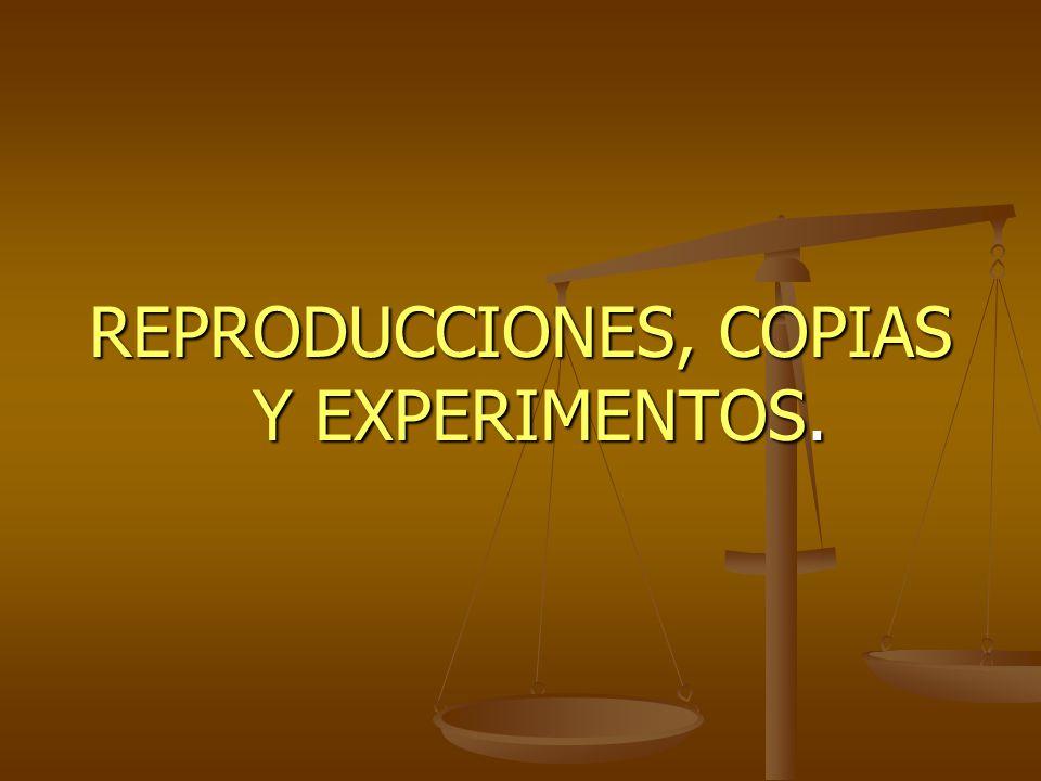 REPRODUCCIONES, COPIAS Y EXPERIMENTOS.