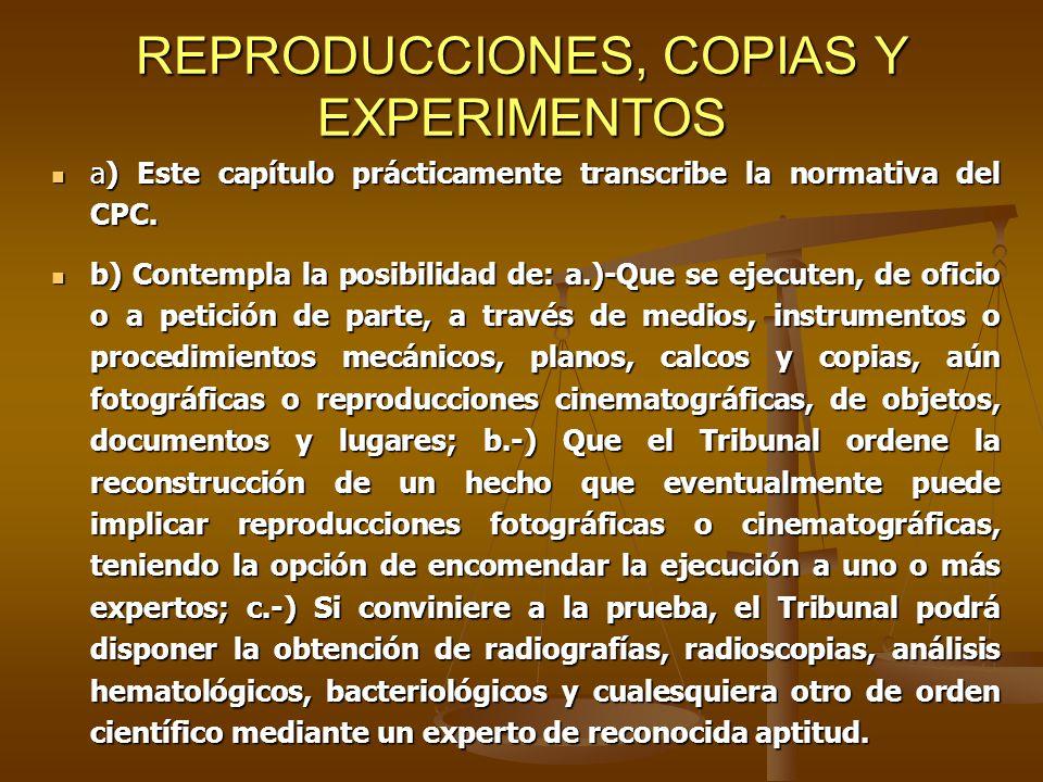 REPRODUCCIONES, COPIAS Y EXPERIMENTOS