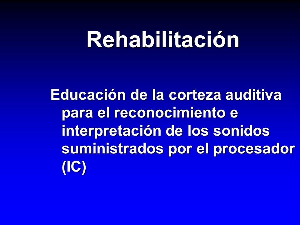 Rehabilitación Educación de la corteza auditiva para el reconocimiento e interpretación de los sonidos suministrados por el procesador (IC)