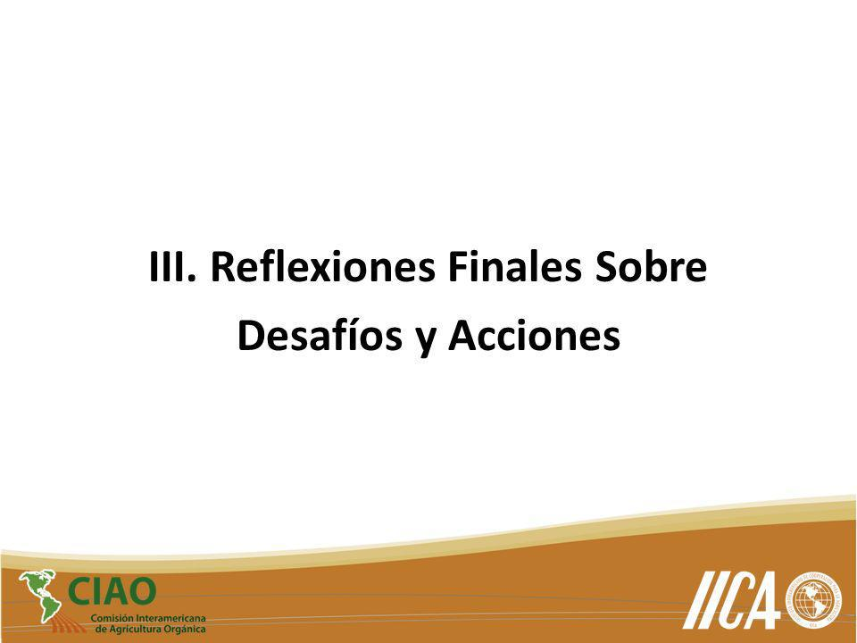 III. Reflexiones Finales Sobre Desafíos y Acciones