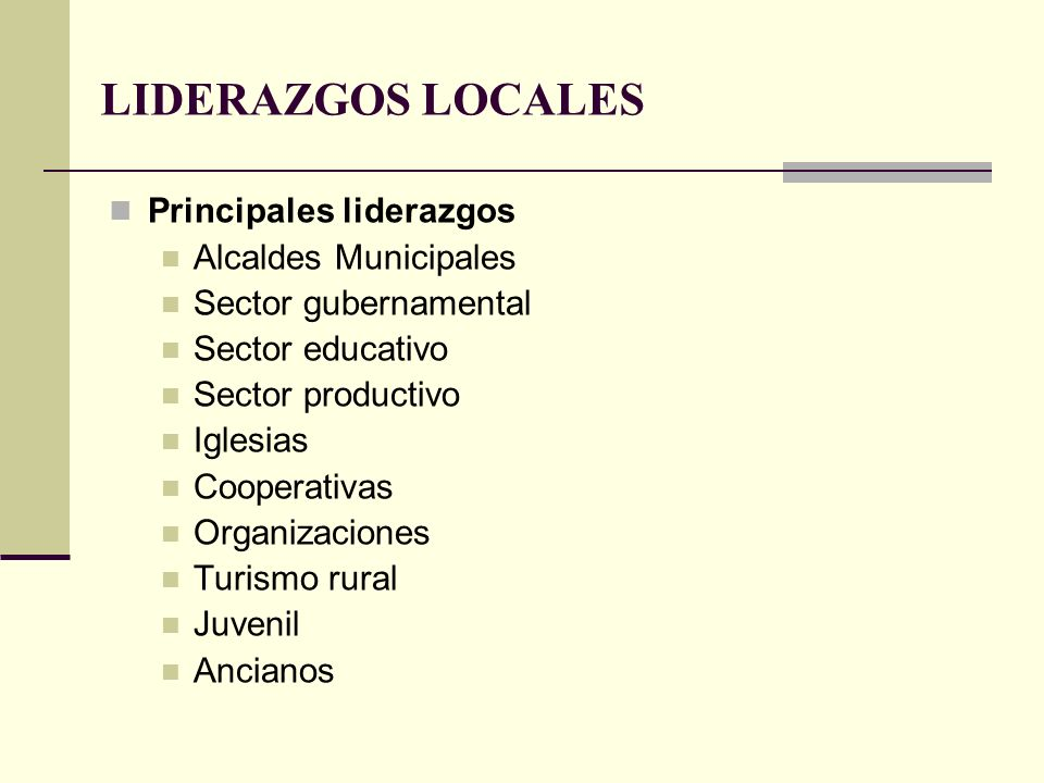 LIDERAZGOS LOCALES Principales liderazgos Alcaldes Municipales