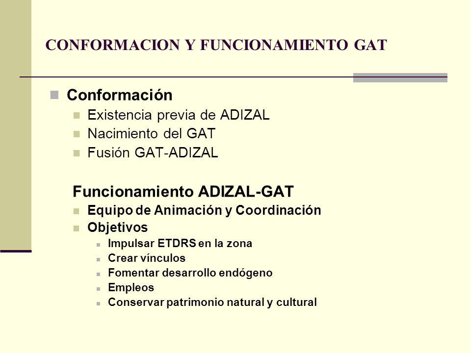 CONFORMACION Y FUNCIONAMIENTO GAT