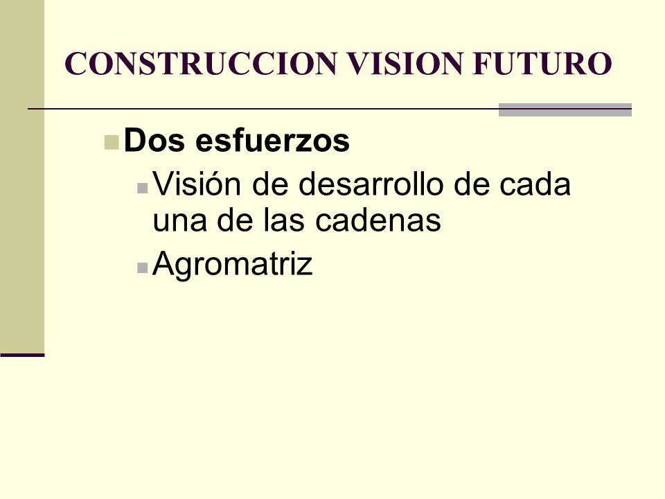 CONSTRUCCION VISION FUTURO