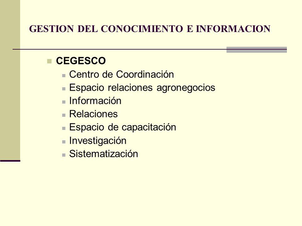 GESTION DEL CONOCIMIENTO E INFORMACION