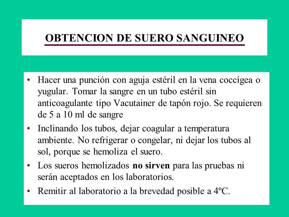 OBTENCION DE SUERO SANGUINEO