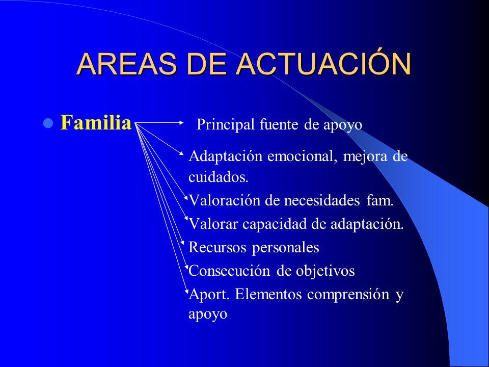 AREAS DE ACTUACIÓN Familia Principal fuente de apoyo