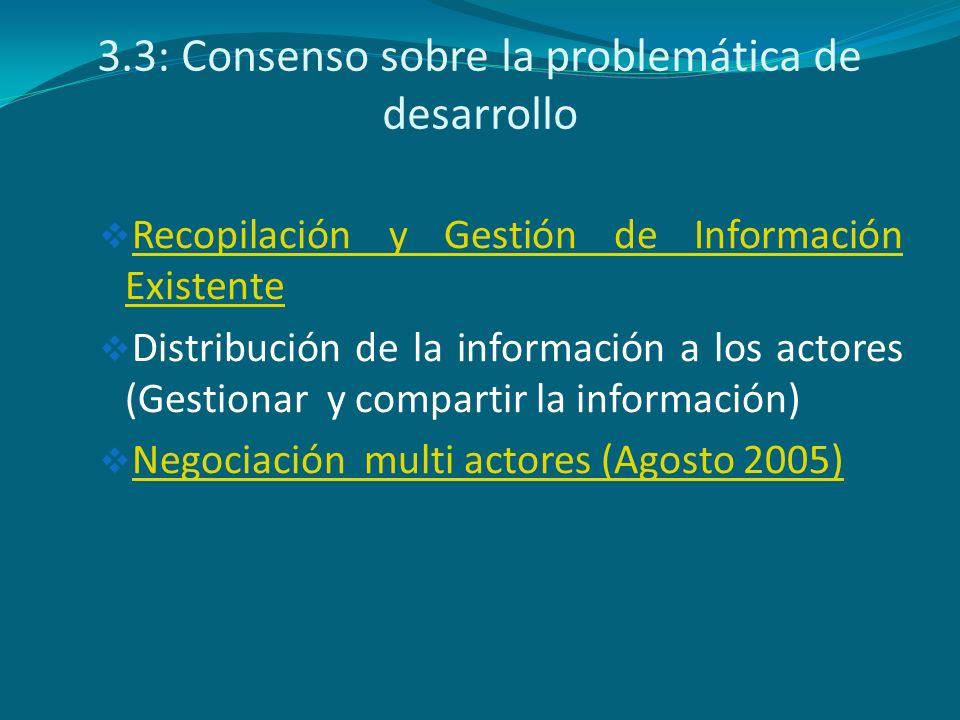 3.3: Consenso sobre la problemática de desarrollo