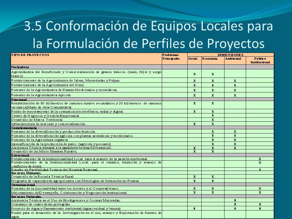 3.5 Conformación de Equipos Locales para la Formulación de Perfiles de Proyectos