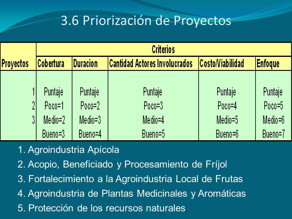 3.6 Priorización de Proyectos